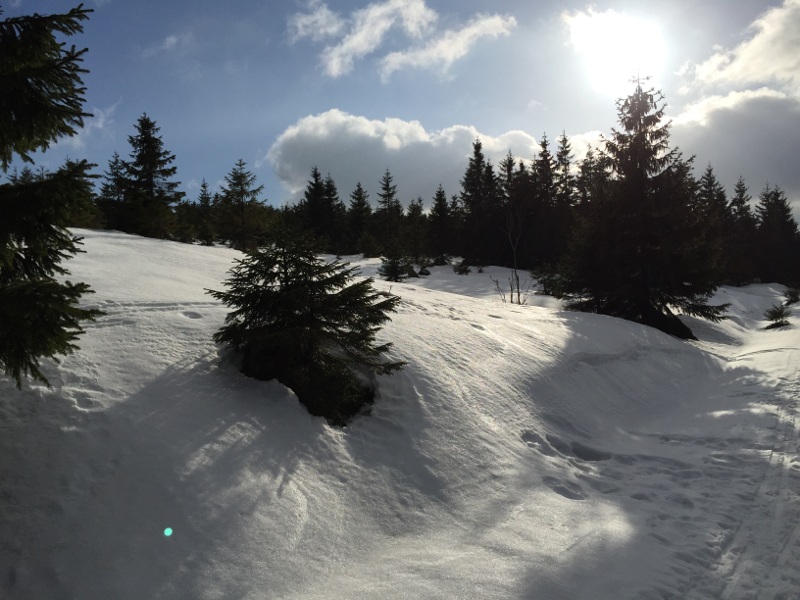wintersport-braunlage